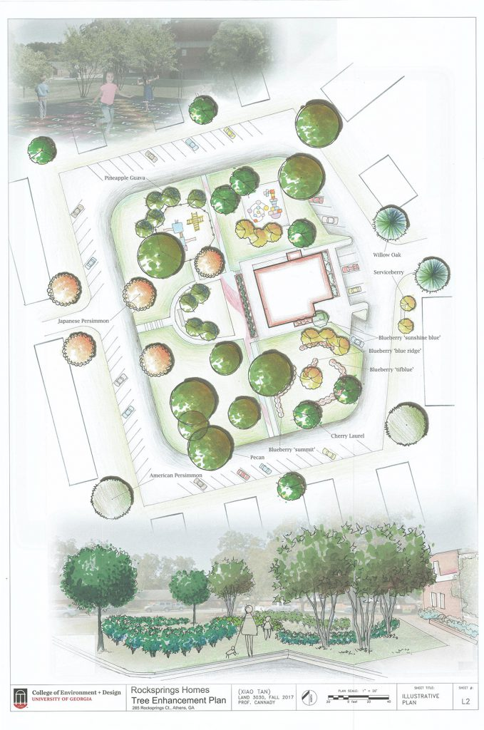 Rocksprings Homes Community Center planting plan by Xiao Tan