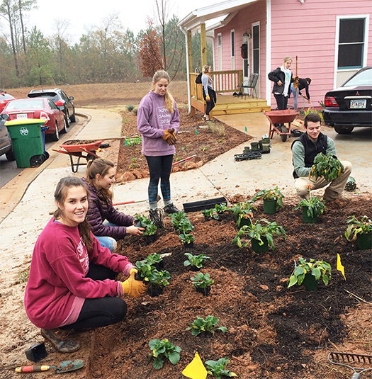 CED students planting at Cannontown