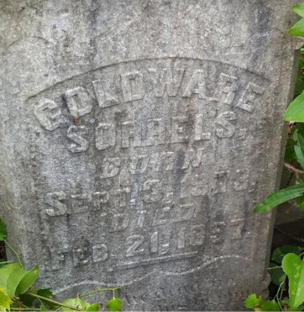 MHP Student Elizabeth Jones Works to Preserve Local Cemetery